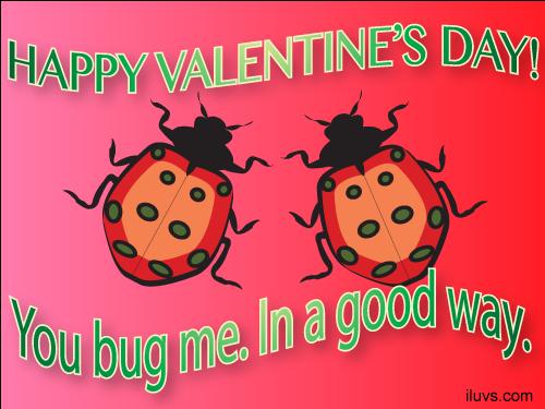 bug_valentine_me