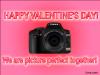 picture_perfect_valentine